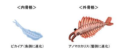 Gaikoku_naikoku_2